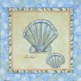 Bubble Bath Shells II Print by Grace Pullen