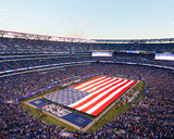 Salute to Service at MetLife Stadium Photo by Gary Hershorn