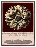 Rosone Antico II Prints