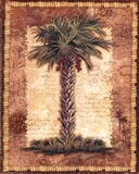 Classic Palm II Poster by Kathleen Denis