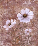 Lace Flowers II Poster von Lisa Ven Vertloh