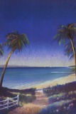 Tropical Path II Prints by Fred Fieber