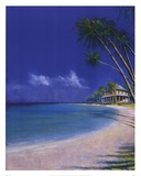 Bahama Cove Posters by Fred Fieber