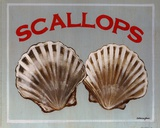 Scallops Print by Catherine Jones
