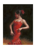 Flamenco II Art by Patrick Mcgannon