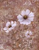 Lace Flowers II Prints by Lisa Ven Vertloh
