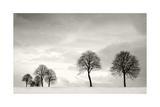 Winter Solstice Prints by Ilona Wellmann