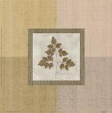 Leaf Element l Prints by Marguerite Gonot