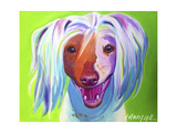 Chinese Crested - Grin Affiches par  Dawgart
