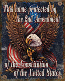Protected By 2nd Ammendment Tin Sign