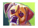 Puggle - Cooper Affiches par  Dawgart