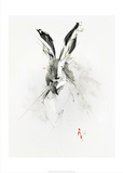 Mr. Rabbit Posters by Alexis Marcou