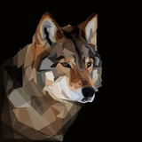 Dangerous Head of Timber Wolf on Dark Background Art by  mid92