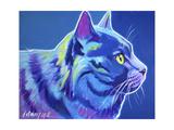 Cat - Blue Boy Poster par  Dawgart