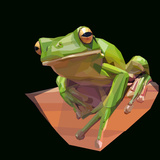 Green Tree Frog Climbs Branch on Dark Background Posters by  mid92