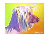 Chinese Crested - Profile Affiche par  Dawgart