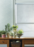Spectrum Window Privacy Film Stickers pour fenêtres