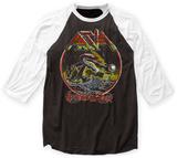 Asia- American Tour Raglan T-shirt
