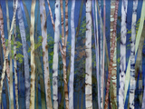 Mystery of Trees-Birches Wood Print by Sharon Pitts
