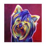 Yorkie - Furbie Face Affiche par  Dawgart
