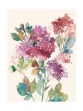 Sweet Hydrangea I Prints by Asia Jensen