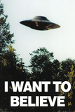 The X-Files- I Want To Believe Saucer Flight Kunstdrucke