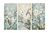 Triptych in Bloom Plakater av Asia Jensen