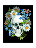 Watercolor Human Skull Poster by  tanycya