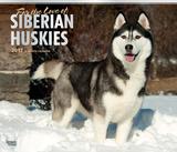 For the Love of Siberian Huskies Deluxe - 2017 Calendar Calendars