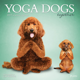 Yoga Dogs Together - 2017 Calendar Calendars