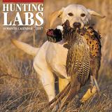 Hunting Labs - 2017 Calendar Kalendarze