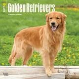 Golden Retrievers - 2017 Calendar Calendars