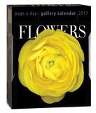 花(日めくり)(2017年箱入りカレンダー) カレンダー