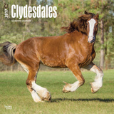 Clydesdales - 2017 Calendar Calendriers