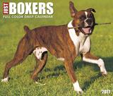 Just Boxers - 2017 Boxed Calendar Kalendarze