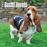 Basset Hounds - 2017 Calendar Calendars