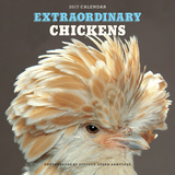 Extraordinary Chickens - 2017 Calendar Calendars