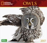 National Geographic Owls - 2017 Calendar Calendriers