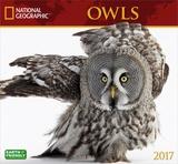 National Geographic Owls - 2017 Calendar Kalendáře