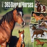 365 Days of Horses - 2017 Calendar Calendars