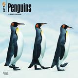 Penguins - 2017 Calendar Calendriers