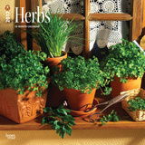 Herbs - 2017 Calendar - Takvimler