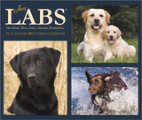 Just Labs - 2017 Boxed Calendar Kalendere