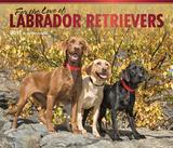 For the Love of Labrador Retrievers Deluxe - 2017 Calendar - Takvimler