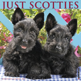 Just Scotties - 2017 Calendar Kalendarze