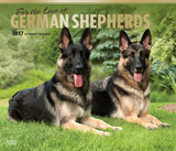 For the Love of German Shepherds Deluxe - 2017 Calendar Calendars