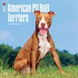 American Pit Bull Terriers - 2017 Calendar Kalenders