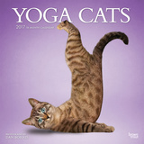 Yoga Cats - 2017 Calendar Calendarios