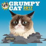 Grumpy Cat - 2017 Calendar Calendars