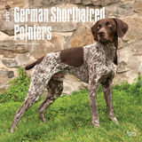 German Shorthaired Pointers - 2017 Calendar Kalendarze